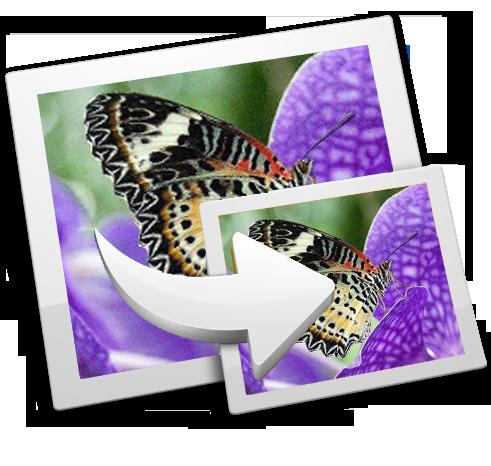 تطبيقات وأدوات مجانية لضغط حجم الصور مع حفظ جودتها