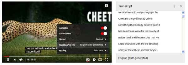 youtube-video-transcription